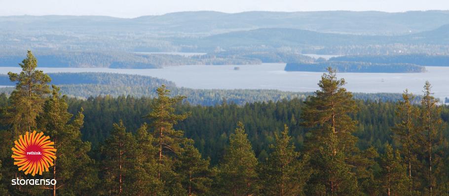 stora enso skog